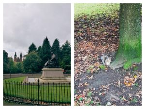 Glasgow scoiattolo
