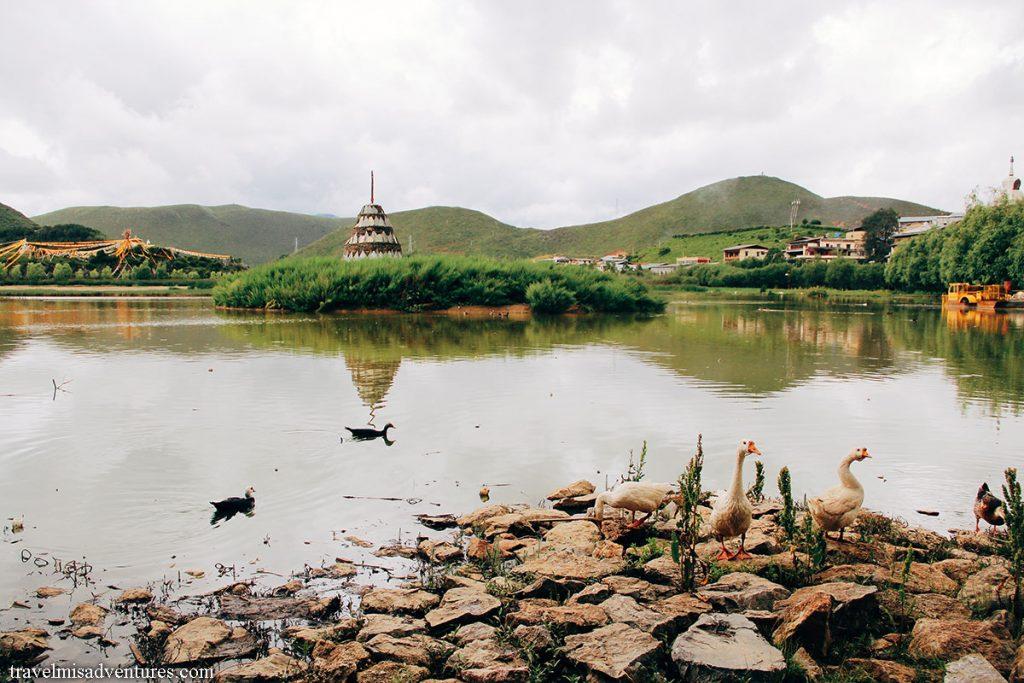 Shangrila-monastero-songzanlin
