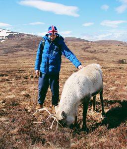 Cairngorms-Reindeer-Center-Scozia