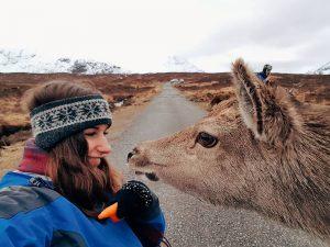 Cervi-Glencoe-Scozia-cosa-vedere